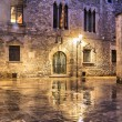 Gothic quarter of Barcelona in wet weather conditions — Stock Photo #57508983