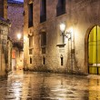 Gothic quarter of Barcelona in wet weather conditions — Stock Photo #57509033