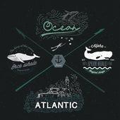 Set of vintage nautical emblems — Stock Vector