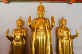 Golden Buddha Statue, The attitude of stopping the rainstorm, Wa — Stock Photo
