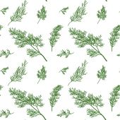 Dill seamless pattern — Stock Vector