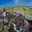 Beautiful vibrant panorama picture with a view on icelandic waterfall in iceland goddafoss gullfoss skogafoss skogarfoss dettifoss seljalandsfoss — Stock Photo #59498835