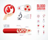 Donor infographics Icons Set. — ストックベクタ