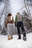 Rear view of a mature couple walking through snow — Stock Photo