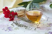 Thyme herbal tea — Stock Photo