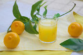 Fresh bergamot juice — Stock Photo