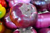 Pirple round eggplant Helios — Foto Stock