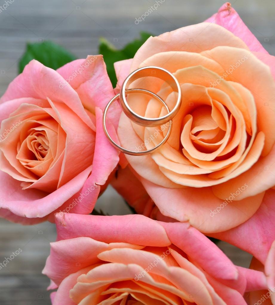 zwei goldene verlobungsringe auf eine sch ne hochzeitsstrau rosa rosen stockfoto 53042935. Black Bedroom Furniture Sets. Home Design Ideas