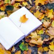 An empty notebook covered with autumn leaves — Stock Photo #55928433