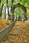 Old steps covered in autumn leaves — Stock Photo