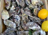 用柠檬新鲜和未煮熟的牡蛎 — 图库照片