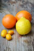 Set of citrus fruits from tangerines, kumquats, oranges and lemons — Stock Photo