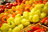 Sweet orange, yellow and red bell peppers — Stock Photo