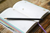 An empty retro daily planner with black pencil — Stock Photo