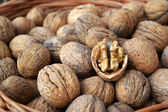 Lots of healthy walnuts in shells — Stock Photo