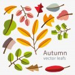 Vector autumn template. Modern stylized colorful leafs. — Stock Vector #55322123