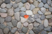 Red paper heart on the pebble stone floor — Stock Photo
