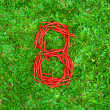 """""""8"""" symbol shaped group of red chili peppers — Stock Photo #66659143"""