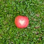 Bir çim üzerinde bir kalp ile kırmızı elma — Stok fotoğraf #66659609