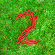 """""""2"""" symbol shaped group of red chili peppers — Stock Photo #66659611"""