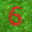 """""""6"""" symbol shaped group of red chili peppers — Stock Photo #66660445"""
