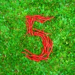 """""""5"""" symbol shaped group of red chili peppers — Stock Photo #66660763"""