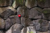 Red rubber heart in the big stones — 图库照片
