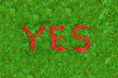 """""""YES"""" word on the green grass — Foto Stock"""