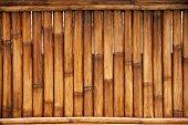 Bamboo fence texture — Stock Photo