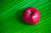 Red apple on a banana leaf — Stock Photo