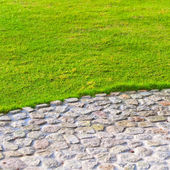 Grass lawn and cobblestone pavement — Stock Photo