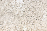 Rough wall plaster texture — Stock fotografie