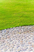 Grass lawn and cobblestone pavement — Stock Photo