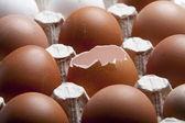 Broken egg in the set — Stock Photo