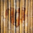 Old bamboo with a heart — Stock Photo #70258845