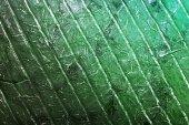Textura de couro abstrata — Fotografia Stock