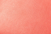 Texture of the leather red — Stock Photo