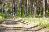 Cyclist on a forest road — Stock Photo