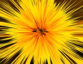 Abstract yellow background, explosion — Stock Photo