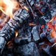 Fire from burning firewood with ashes and flames — Stock Photo #67098249
