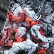 Fire from burning firewood with ashes and flames — Stock Photo #67098335