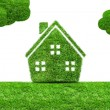 Abstract green grass house icon — Stock Photo #70175877