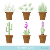 Flat design set of house plant and flower with flowerpot — Stock Vector