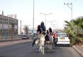 Bedouin woman riding on donkeys — Stock Photo