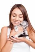 Woman holding little kitten in hands — Stock Photo