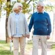 Senior couple holding hands and walking — Stock Photo #55329307