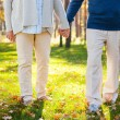 Senior couple holding hands — Stock Photo #55329477