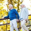 Happy senior couple moving down by wooden staircase — Stock Photo #55329765
