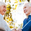Happy senior couple looking at each other — Stock Photo #55329805