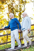 Happy senior couple moving down by wooden staircase — Stock Photo